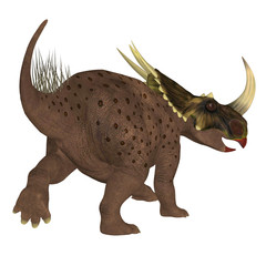 Brown Rubeosaurus Dinosaur Tail - Rubeosaurus was a Ceratopsian herbivorous dinosaur that lived during the Cretaceous Period of North America.