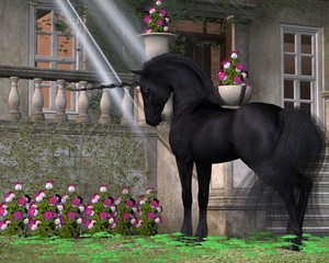 Enchanted Dark Unicorn - A black-coated magical unicorn takes an interest in pink Bell flowers near a forest cottage.