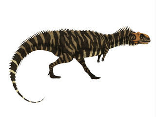 Rajasaurus Dinosaur Side Profile - Rajasaurus was a carnivorous theropod dinosaur that lived in India during the Cretaceous Period.