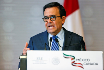 Mexico's Economy Minister Ildefonso Guajardo speaks during a joint message in Mexico City