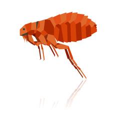 Flat geometric flea
