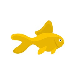 Yellow fish icon. Flat illustration of yellow fish vector icon for web isolated on white