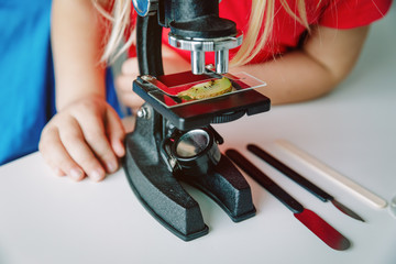 Kids learn to use microscope, science class, home learning