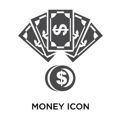 Money icon vector sign and symbol isolated on white background, Money logo concept