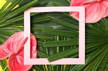 Creative flat lay composition with tropical foliage and pink anthurium flowers