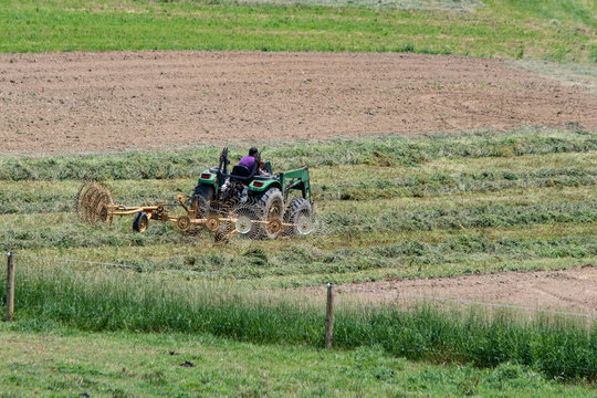 Farmer tedding hay