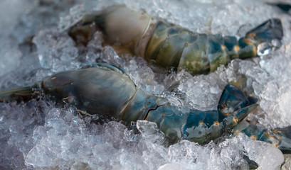 Image of frozen shrimp in the market, Thailand