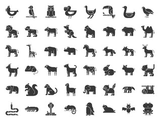 Big set of safari, arctic, forest animal and bird such as tiger, seal, camel, sloth, kangaroo, frog, pelican, parrot, toucan icon, solid icon