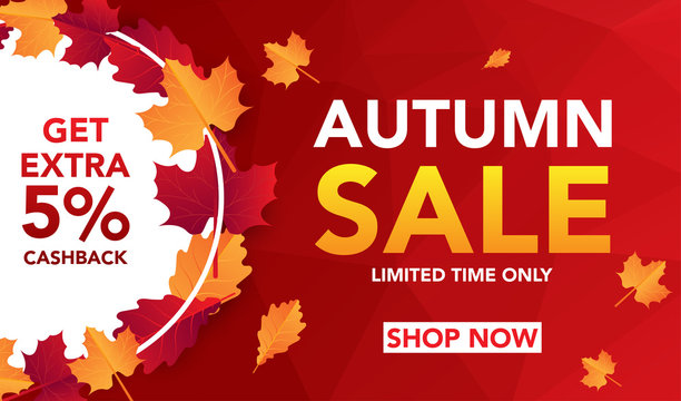 Autumn sale banner template with leaves, fall leaves for shopping sale. banner design. Poster, card, label, web banner. Vector illustration