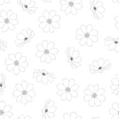Cosmos Flower Outline White Background