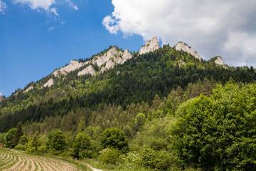 Mountains Three Crowns (Trzy Korony) is Polish Pieniny. National park in Pieniny. Mountains and landscapes above the Dunajec.