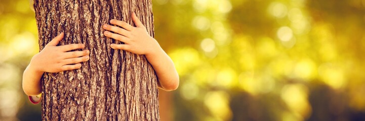 Fototapeta Little boy in the park hugging tree obraz