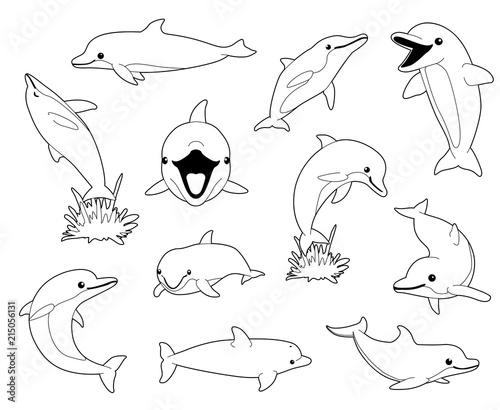 Cute Dolphin Coloring Book Cartoon Vector Illustration\