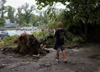 A man takes a picture of a fallen tree after a storm in Kiev