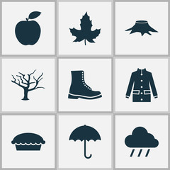 Seasonal icons set with maple, rain, apple pie and other apple  elements. Isolated vector illustration seasonal icons.