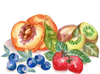 Hand drawn watercolor illustration fruits on the white background
