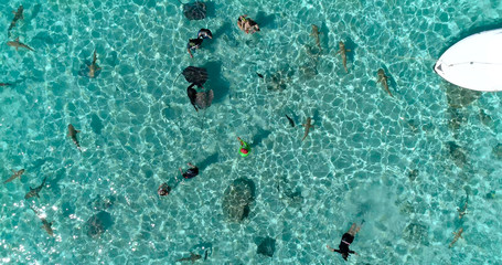 snorkeling in a dream lagoon in French Polynesia, in an aerial view