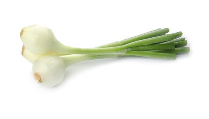 Fresh green onion on white background Wall mural