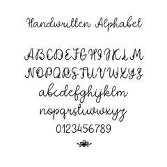 Vector Calligraphy Alphabet. Exclusive Letters. Decorative handwritten brush font for Wedding Monogram, Logo, Invitation