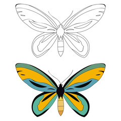 butterfly book coloring page