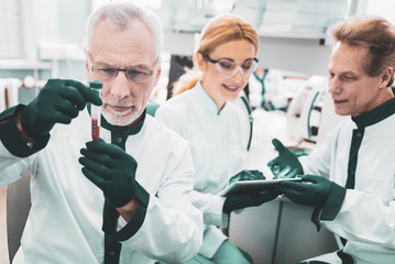 Scientific researchers. Three promising scientific researchers wearing green gloves feeling involved in laboratory work