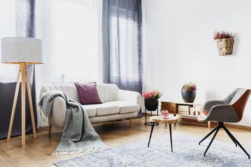 Cozy flat interior