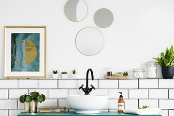 Poster next to round mirrors above washbasin and plant in white bathroom interior. Real photo