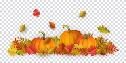 Autumn leaves and pumpkins pattern on transparent background. Seasonal floral maple oak tree orange leaves with gourds for thanksgiving holiday, harvest decoration vector design. Wall mural