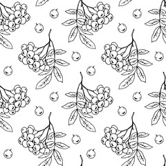 Branches and berries of mountain ash, seamless vector pattern.