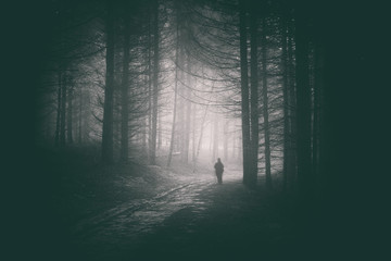 Fototapeten Wald Peson walking in path of dark and mysterious forest