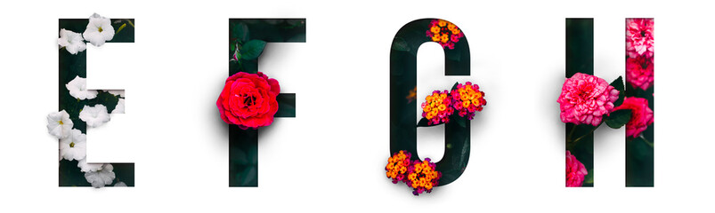Flower font Alphabet e, f, g, h, made of Real alive flowers with Precious paper cut shape of...