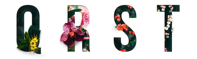 Flower font Alphabet q, r, s, t, made of Real alive flowers with Precious paper cut shape of letter. Collection of brilliant flora font for your unique decoration in spring, summer & many concept idea