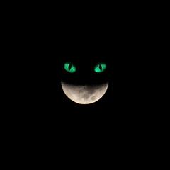 Moon smile - Alice in Wonderland Cat