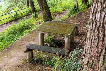 Dilapidated wooden chair and desk in garden.