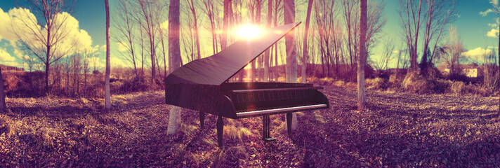 Music piano concept and nature. Surreal dream scape forest and sunset and black grand piano