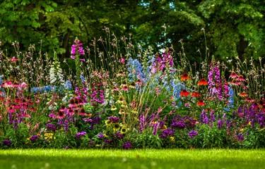 Fototapeta kolorowy ogród kwiatowy obraz