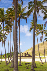 Moai at Anakena Beach, Easter Island, Polynesia, Chile
