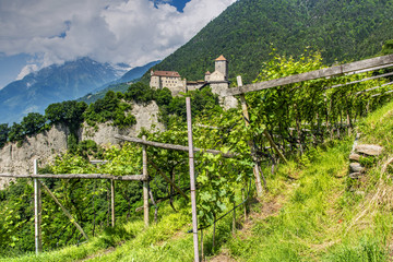 Tirol Castle or Castel Tirolo, Tirolo - Tirol, Trentino Alto Adige - South Tyrol, Italy