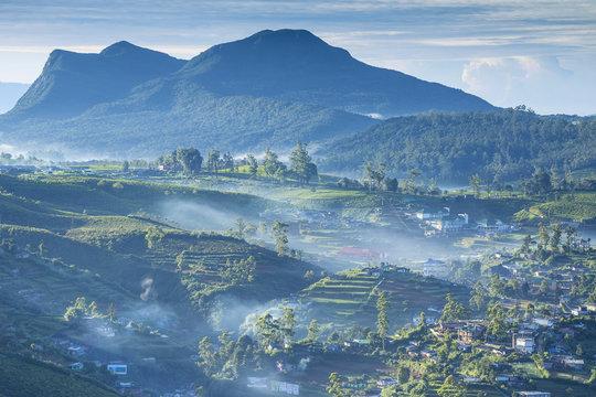 Rural landscape, Nuwara Eliya, Sri Lanka