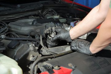 Obraz Wymiana filtra oleju w samochodzie osobowym. - fototapety do salonu