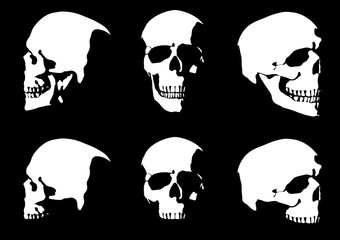 Set of hand drawn skull silhouette isolated on black background. Vector illustration.