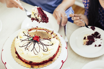 Cropped image of woman serving cake slice at table