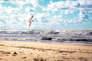 samotna mewa walczy z Bałtyckim wiatrem