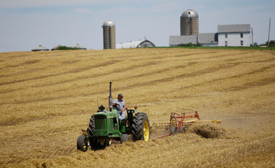 A farmer harvests his field at his farm in Pecatonica