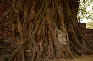 ワットマハート 仏像の頭
