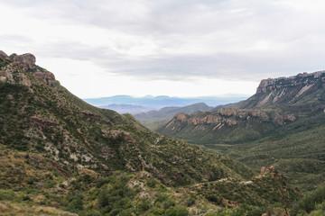 South Texas landscape