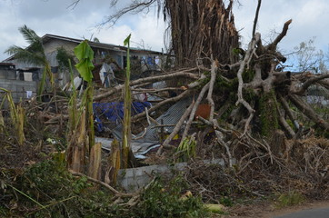 "A cyclone hit the islands of Vanuatu destroying about 80 % of the buildings. ""Reconstruction might take years"", says the President."