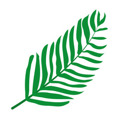 tropical plant branch leaves style
