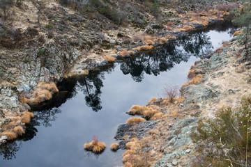 Flowing tranquil creek in rocks