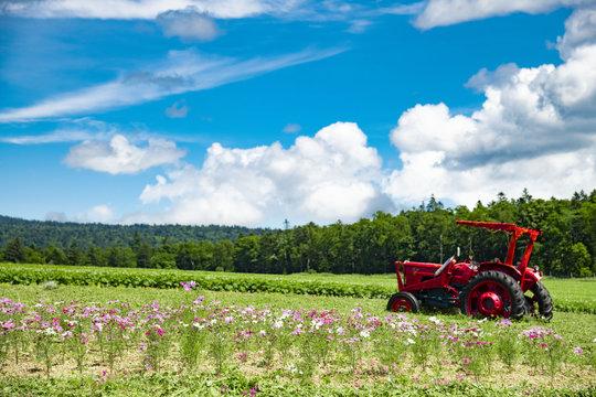北海道の美しい農業